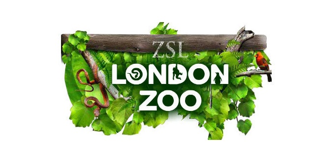 bilogy coursework london zoo Students who searched for how to become a zoo curator: career guide found the following resources, articles, links, and information helpful.